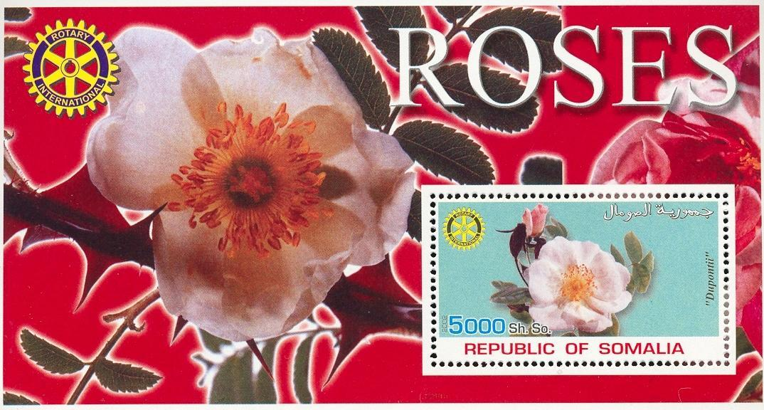 Stamps with Flowers, Roses, Rotary from Somalia (non official) (image for product #030005)