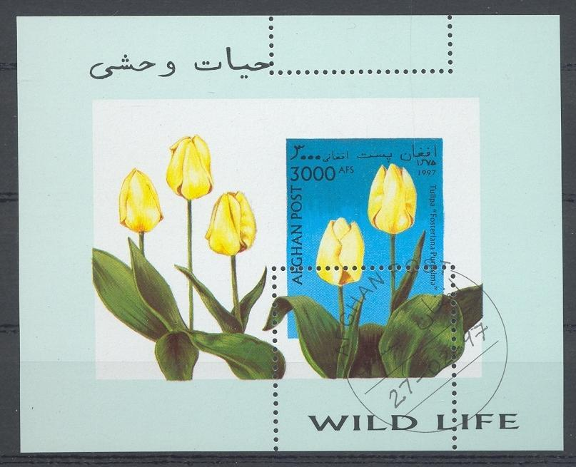 Stamps with Tulip from Afghanistan (image for product #032443)