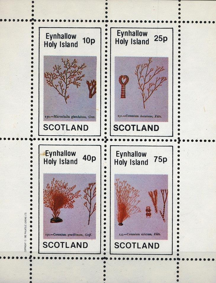 Stamps with Plants from Eynhallow (non official) (image for product #033075)