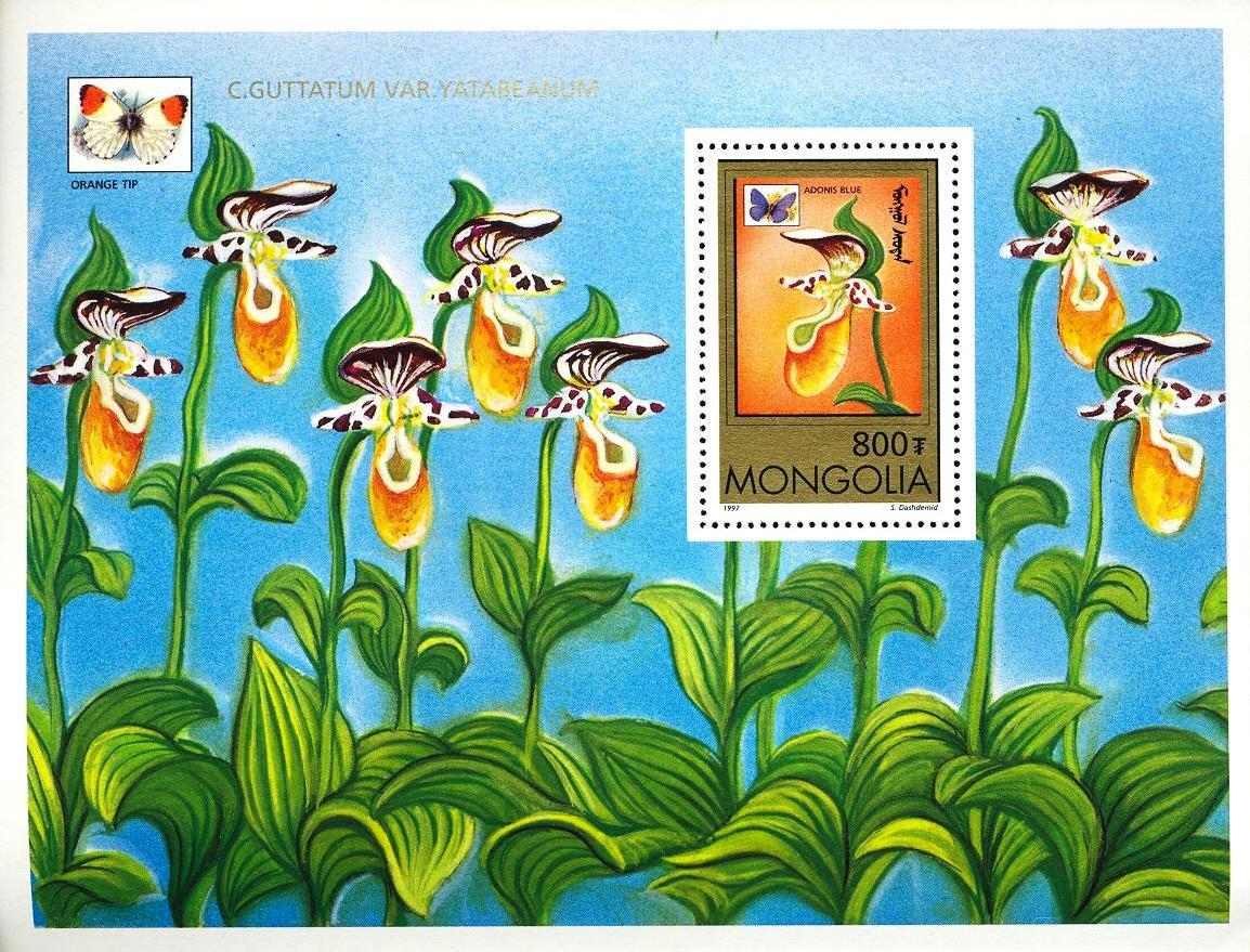 Stamps with Butterflies, Orchids from Mongolia (image for product #033120)