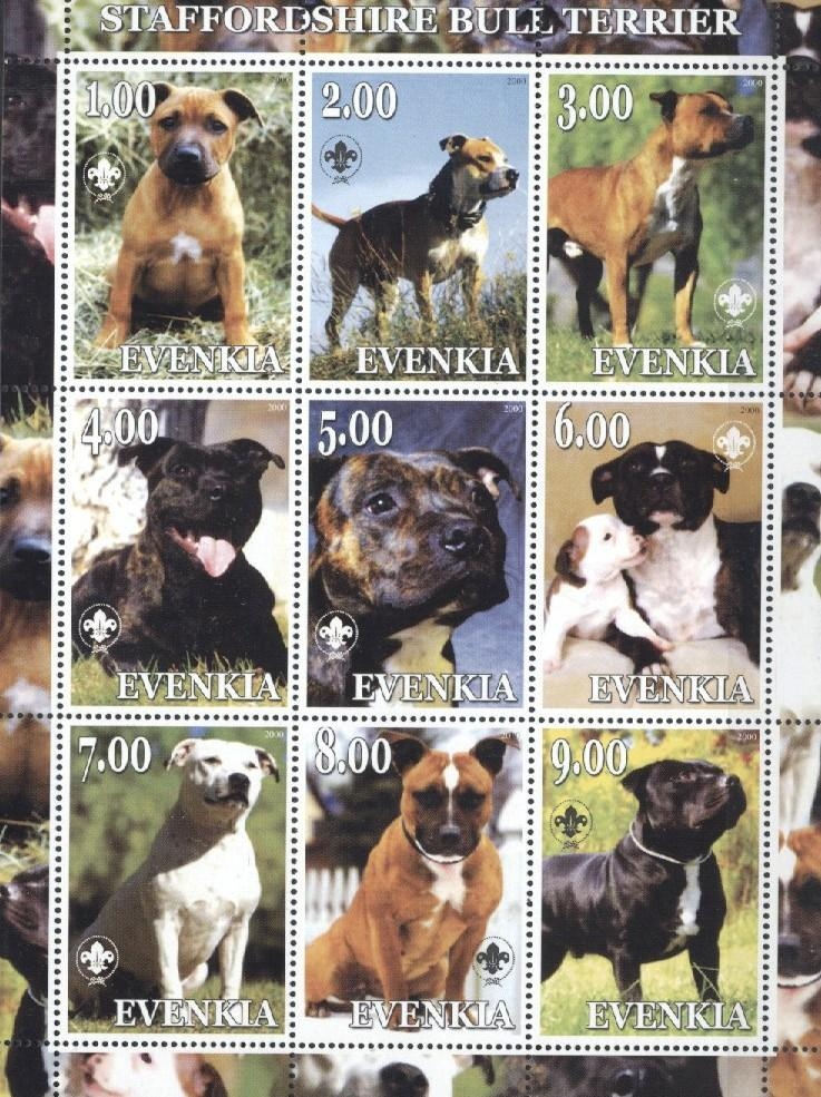 Stamps with Dogs, Scouting from  (image for product #036037)