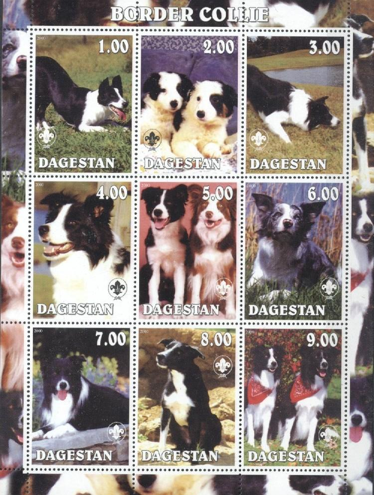 Stamps with Scouting, Dogs from Dagestan (non official) (image for product #036038)