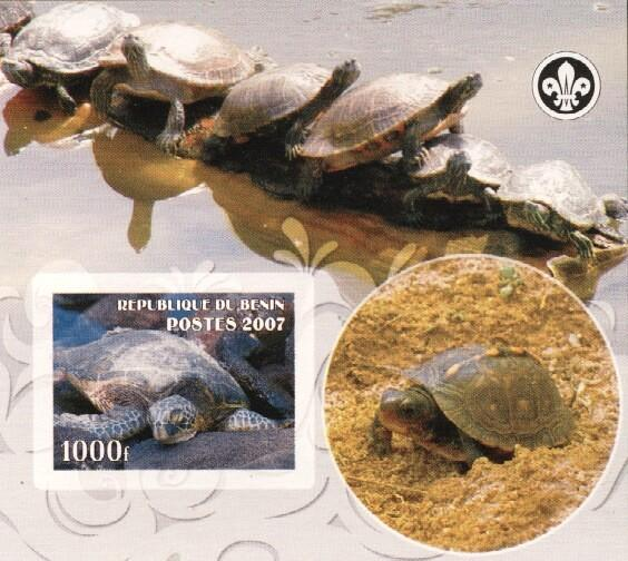 Stamps with Scouting, Turtle from Benin (non official) (image for product #036223)
