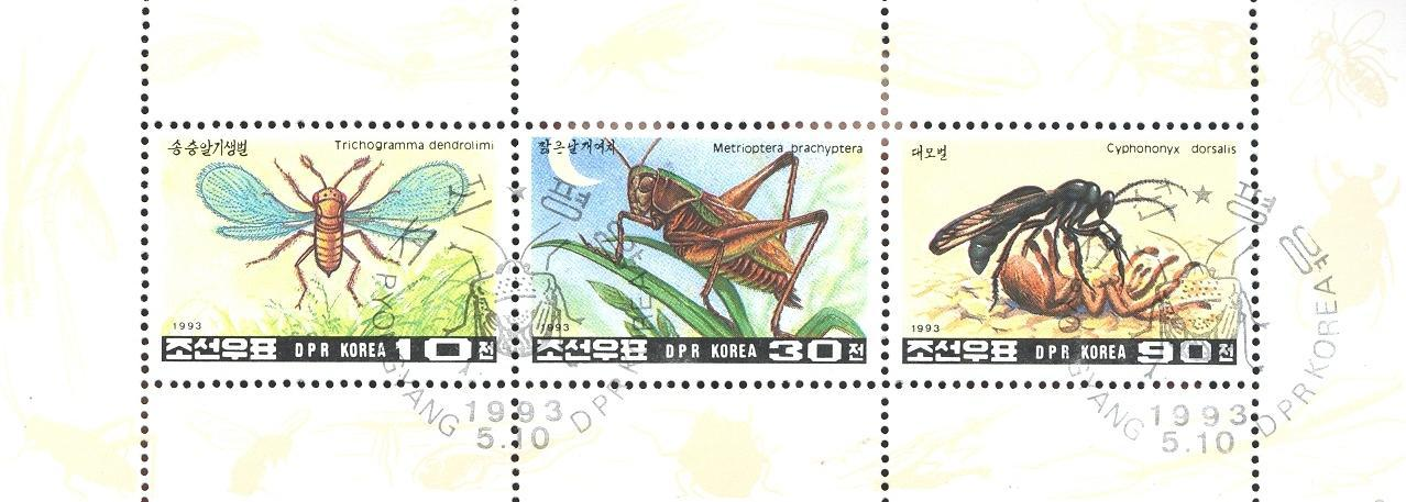 Stamps with Insects from  (image for product #036722)