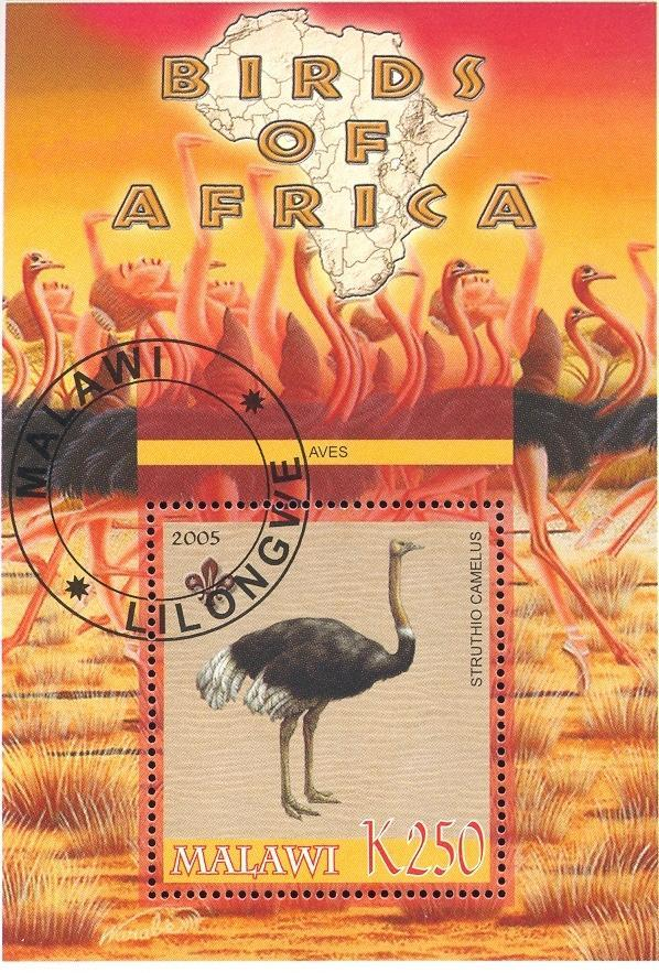 Stamps with Map, Scouting, Ostrich from Malawi (non official) (image for product #036759)