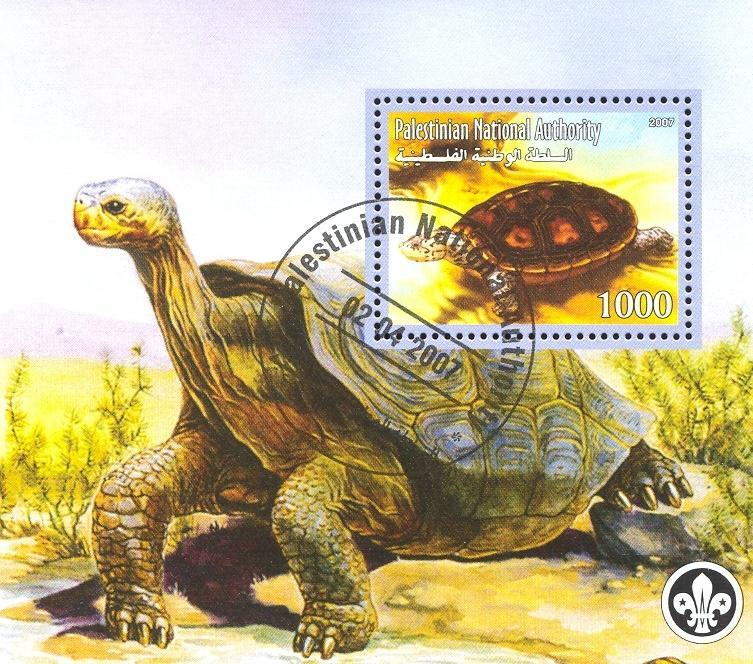 Stamps with Turtle, Scouting from Palestinian Auth. (non official) (image for product #036786)