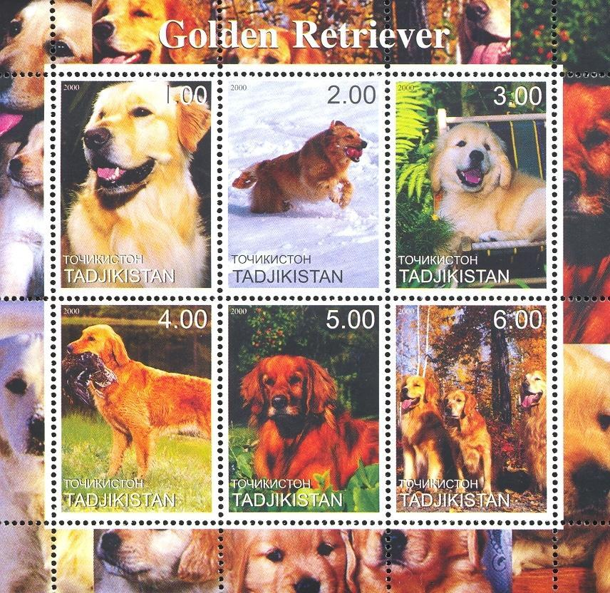 Stamps with Dogs from Tajikistan (non official) (image for product #049397)