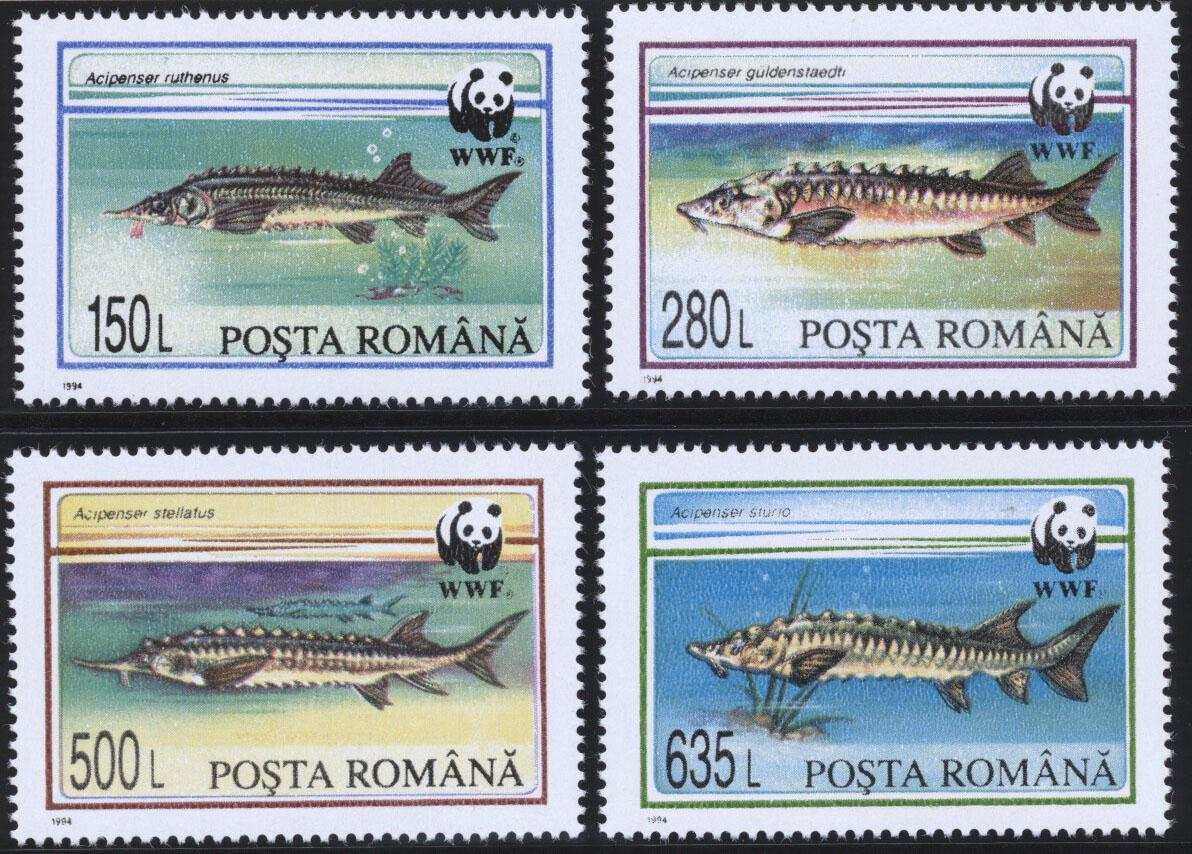 Stamps with Fish, WWF from Romania (image for product #182277)